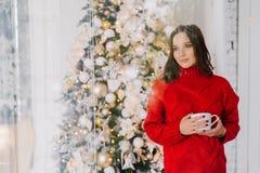 周道宜人看起来女性在被编织的红色毛线衣,举行抢劫用茶或咖啡,在圣诞树附近的立场,认为 免版税库存图片