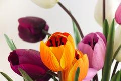 周年礼物的明亮的花在婚礼以后的几年 真实的爱是不尽的 库存照片