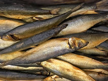 味道好的熏制的鱼鲭鱼特写镜头 免版税库存照片