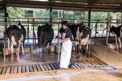 呵叻,泰国- 2014年12月6日:工作t的农夫 免版税库存图片