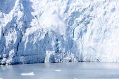 延命菊冰川产犊在阿拉斯加#2 免版税库存照片