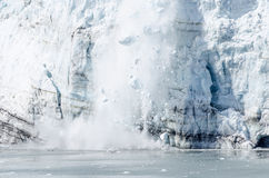 延命菊冰川产犊在阿拉斯加#4 库存图片