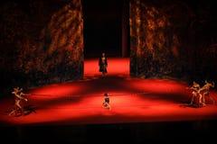 命运现代芭蕾束缚:中华的金莲花 免版税库存照片