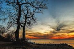 咆哮在海的五颜六色的太阳 库存照片