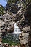 咆哮河秋天, Canyon NP,雪松树丛,加利福尼亚, U国王 免版税库存图片