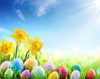 黄水仙和五颜六色的装饰的鸡蛋在晴朗的草甸-复活节 免版税图库摄影