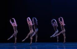 整洁和制服古典芭蕾` Austen汇集` 免版税库存图片