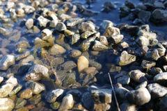 水和岩石在俄勒冈 图库摄影
