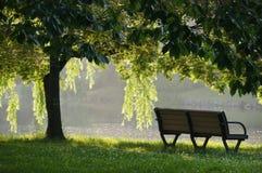 和平在公园 库存照片