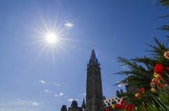 和平塔和郁金香在渥太华加拿大 库存图片
