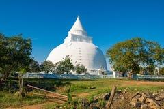 和平塔在斯里兰卡 著名budda寺庙 库存照片