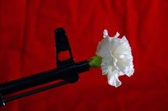 和平战争 免版税图库摄影
