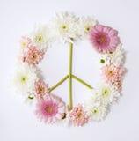 和平标志花 免版税图库摄影