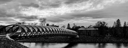 和平桥梁卡尔加里 免版税库存照片