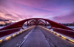 和平桥梁街市卡尔加里中心看法  免版税图库摄影