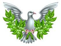 和平橄榄树枝鸠 免版税库存照片