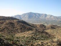 和平的冠足迹,南加州 免版税库存照片