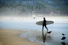 和平的冲浪者 免版税图库摄影