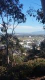 和平的山夏天美丽的景色 免版税图库摄影