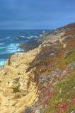 和平的海岸线开花的区域惊人的生动的看法  免版税库存照片