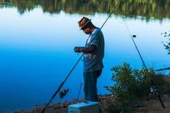 和平的鱼 库存图片