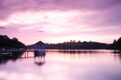 和平紫色 免版税图库摄影