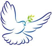 和平鸠 免版税库存图片