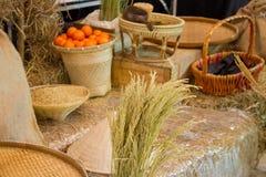 水稻和桔子 库存图片