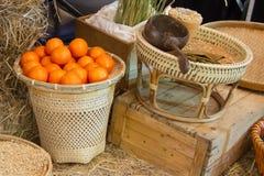 水稻和桔子 图库摄影
