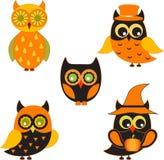 黑和橙色猫头鹰例证 库存图片