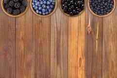 黑和蓝色莓果 黑莓、蓝莓、无核小葡萄干和和蓝莓 免版税库存照片