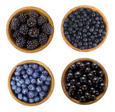 黑和蓝色莓果 黑莓、蓝莓、无核小葡萄干和蓝莓 免版税库存照片