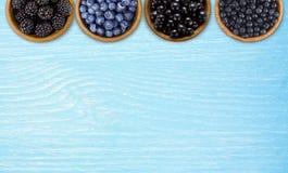 黑和蓝色莓果 黑莓、蓝莓、无核小葡萄干和蓝莓 免版税库存图片