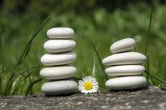 和谐和平衡、两个简单的小卵石塔和雏菊在草的绽放,朴素,五块石头开花 库存照片
