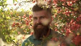 和谐概念 有时髦的理发的有胡子的人与在背景的红色花 绿色衬衣的行家在分支附近 影视素材