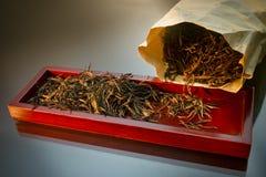 黑和金黄茶叶 免版税库存照片