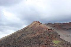 黑和洋白蜡树,小山谷,在火山爆发以后 库存照片