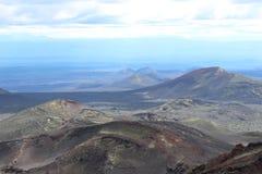 黑和洋白蜡树,小山谷,在火山爆发以后 库存图片