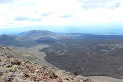 黑和洋白蜡树,小山谷,在火山爆发以后 免版税图库摄影