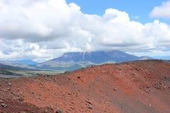 黑和洋白蜡树,小山谷,在火山爆发以后 免版税库存图片