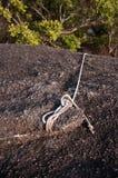 绳索和Stoen 图库摄影