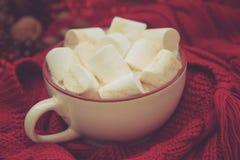 咖啡、围巾和圣诞节装饰 免版税库存图片