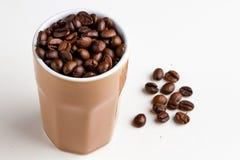 咖啡包含设计要素梯度谷物图象可实现滤网的照片 免版税图库摄影