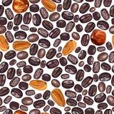 咖啡和坚果的例证 在白色背景的样式 向量 免版税库存图片