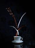 咖啡和牛奶飞溅在白色杯子 免版税库存图片