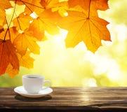 咖啡和秋天 库存照片