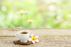 咖啡和赤素馨花花 免版税库存照片