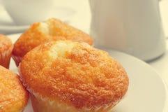 咖啡和magdalenas,典型的西班牙简单的松饼 免版税库存照片