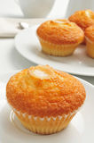 咖啡和magdalenas,典型的西班牙简单的松饼 库存照片