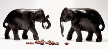咖啡大象 免版税库存照片